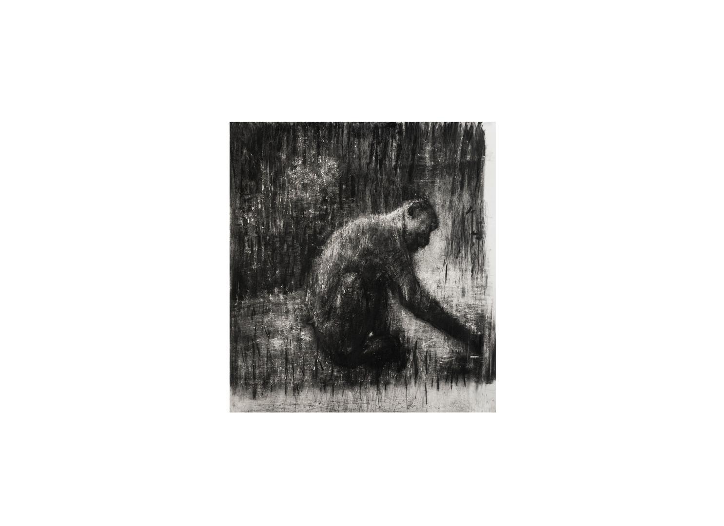 Johann Louw | Aap | 2017 | Charcoal on Paper | 130 x 120 cm