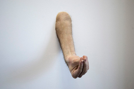 Ed Young   ARM #2   2013   Silicone, Paint and Hair   Dimensions Variable   Edition of 3 + 1 AP