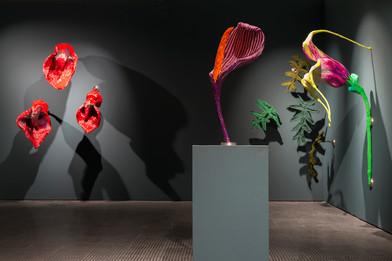 Frances Goodman | Degreened | 2016 | Installation View