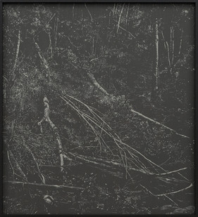 Peter Eastman   Deep Chine - Coldstream IV   2016   Oil on Aluminium   40 x 34 cm