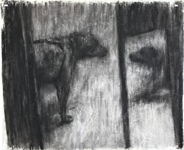 Johann Louw   Konfrontastie   2016   Charcoal on Paper   127 x 158 cm