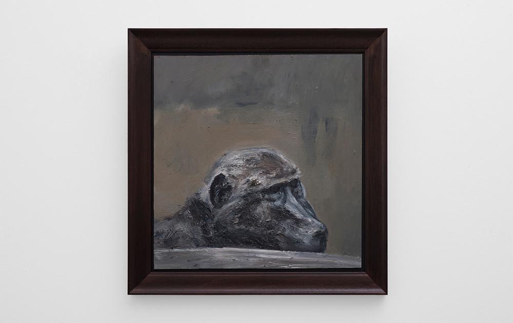 Johann Louw | Bobbejaan Ontnugterd | 2017 | Oil on Panel | 62 x 61 cm