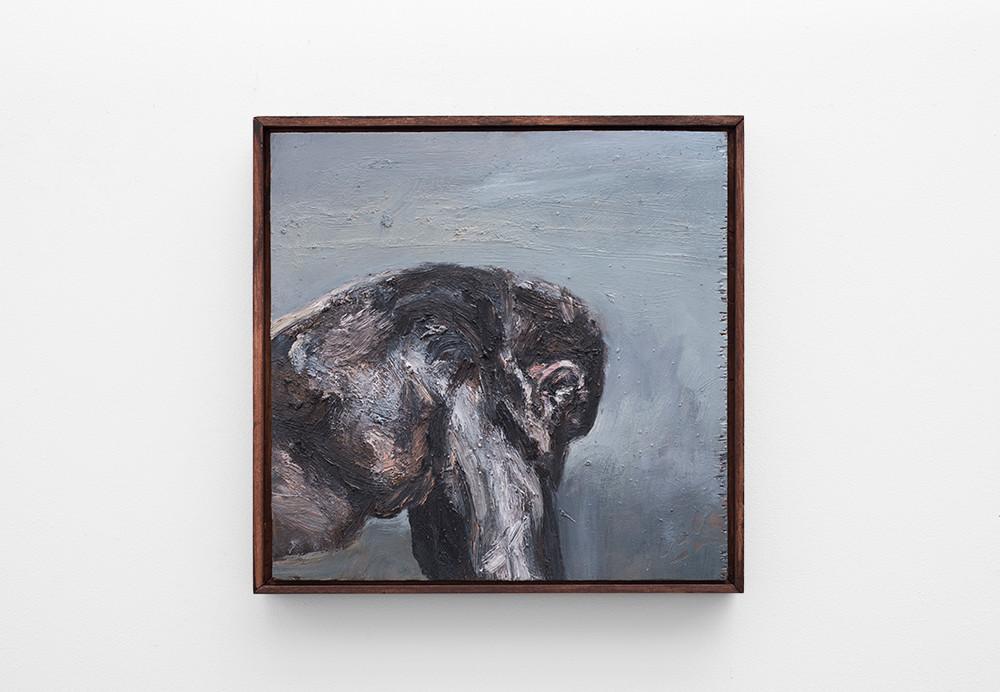 Johann Louw | Sydelings Sjimp | 2017 | Oil on Panel | 41.5 x 42 cm
