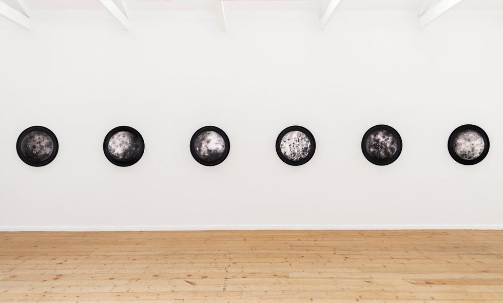 Ernst van der Wal | invasion | 2019 | Installation View