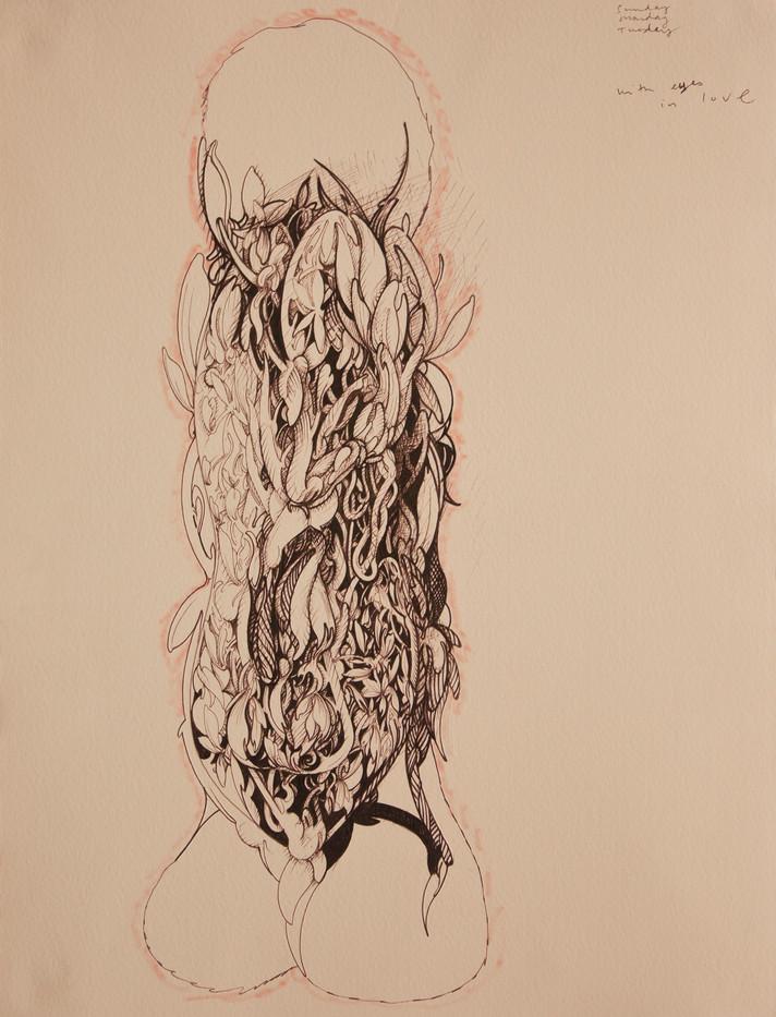 Simon English | Fairy Sheath | 2013 | Ink on Paper | 36.5 x 28 cm