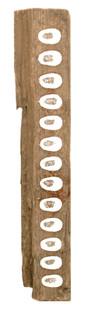 Richard Long | Untitled | 2006 | China Clay Fingerprints on River Avon Wood | 57 x 10 x 6 cm