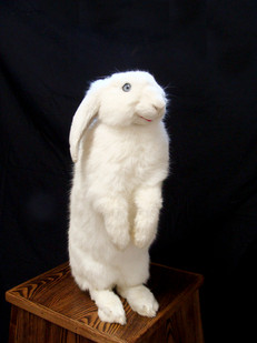 Ed Young | Candy Yum Yum | 2013 | Taxidermied Rabbit. Oryctolagus Cuniculus – New Zealand White Rabbit | 52 cm