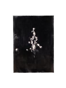 Alexandra Karakashian | Bloom III | 2021 | Oil on Sized Paper | 107 x 75.5 cm