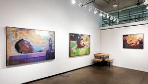 Dallas Art Fair | Frances Goodman