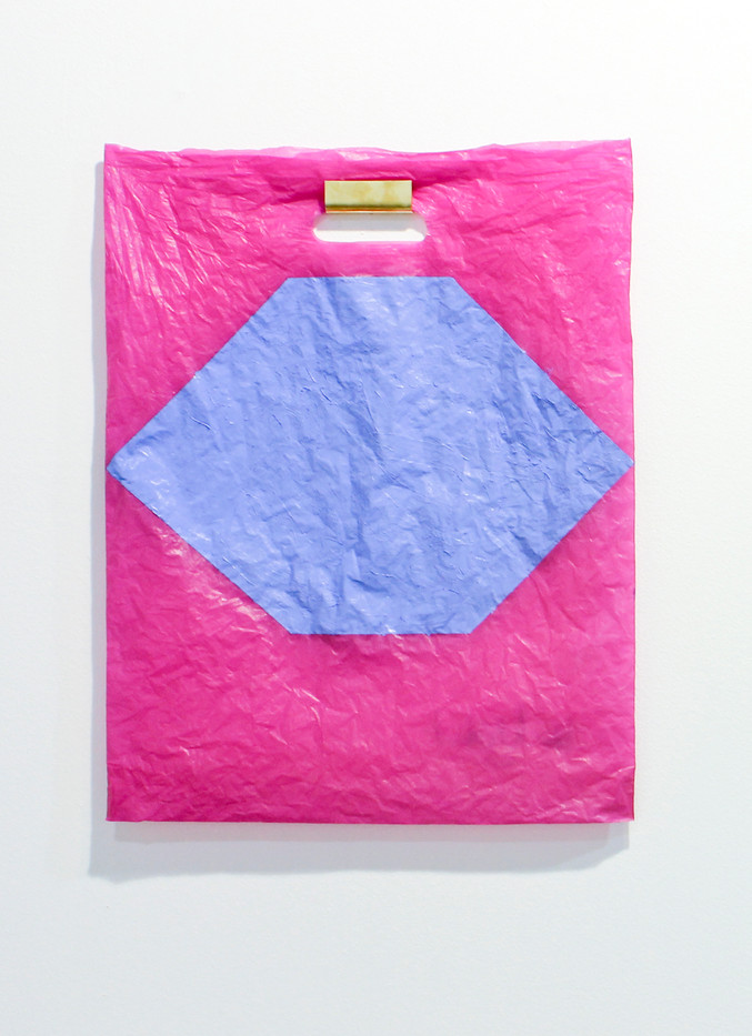 Helen A. Pritchard | Untitled - Carrier 1 | 2013 | Polythene Carrier Bag, Oil Paint and Brass Rail | 50 x 40 cm