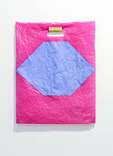 Helen A. Pritchard   Untitled - Carrier 1   2013   Polythene Carrier Bag, Oil Paint and Brass Rail   50 x 40 cm