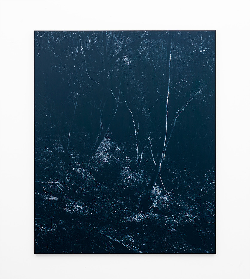 Peter Eastman | Undergrowth III | 2018 | Oil on Aluminium | 184 x 150 cm