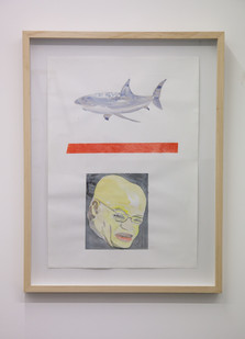 Themba Shibase | Red Line (Shark / JZ) | 2017 | Mixed Media on Cotton Rag | 68.5 x 49.5 cm