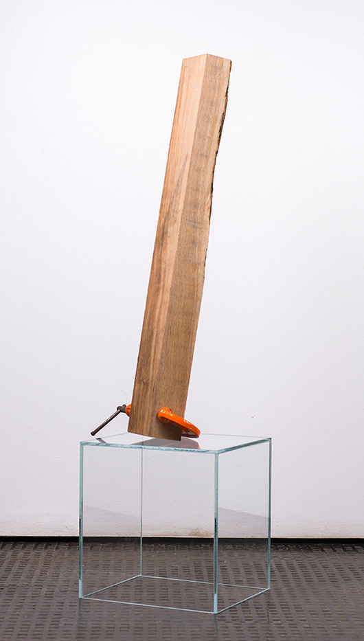 Ruann Coleman   Stay 5   2017   French Oak and Clamp on Glass   108 x 30 x 25 cm