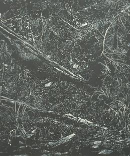 Peter Eastman   Deep Chine - Coldstream II   2016   Oil on Aluminium   40 x 34 cm