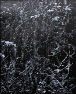 Peter Eastman | Strange Loops (Meg's Theme) | 2019 | Oil on Aluminium | 185 x 150 cm