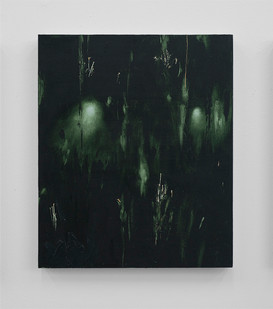 Jake Aikman | Night Blooms II | 2017 | Oil on Board | 48 x 40 cm