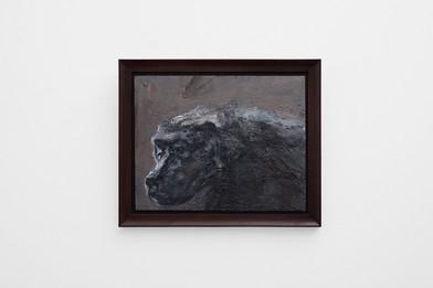Johann Louw | Klein Bobbejaan in Skemer | 2017 | Oil on Panel | 35 x 44 cm