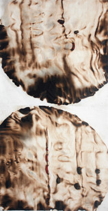 Sandile Zulu | Shard of Archetype Form 4 | 2012 | Fire, Water, Air and Earth on Canvas | 90 x 46 cm