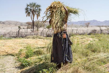 Margaret Courtney-Clarke | Erica Ganuses Harvests | 2018 | Giclée Print on Hahnemühle Photo Rag Paper | 76.5 x 110 cm | Edition of 6 + 2 AP