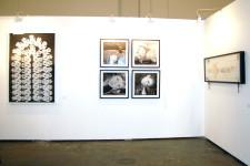 FNB Joburg Art Fair | 2012 | Installation View