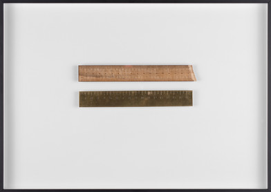 Ruann Coleman | Comparing | 2017 | Brass and Wild Pear | 30.5 x 42.5 cm