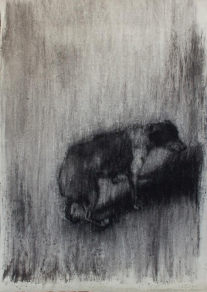 Johann Louw | Enkel Hond | 2016 | Charcoal on Paper | 185 x 127 cm