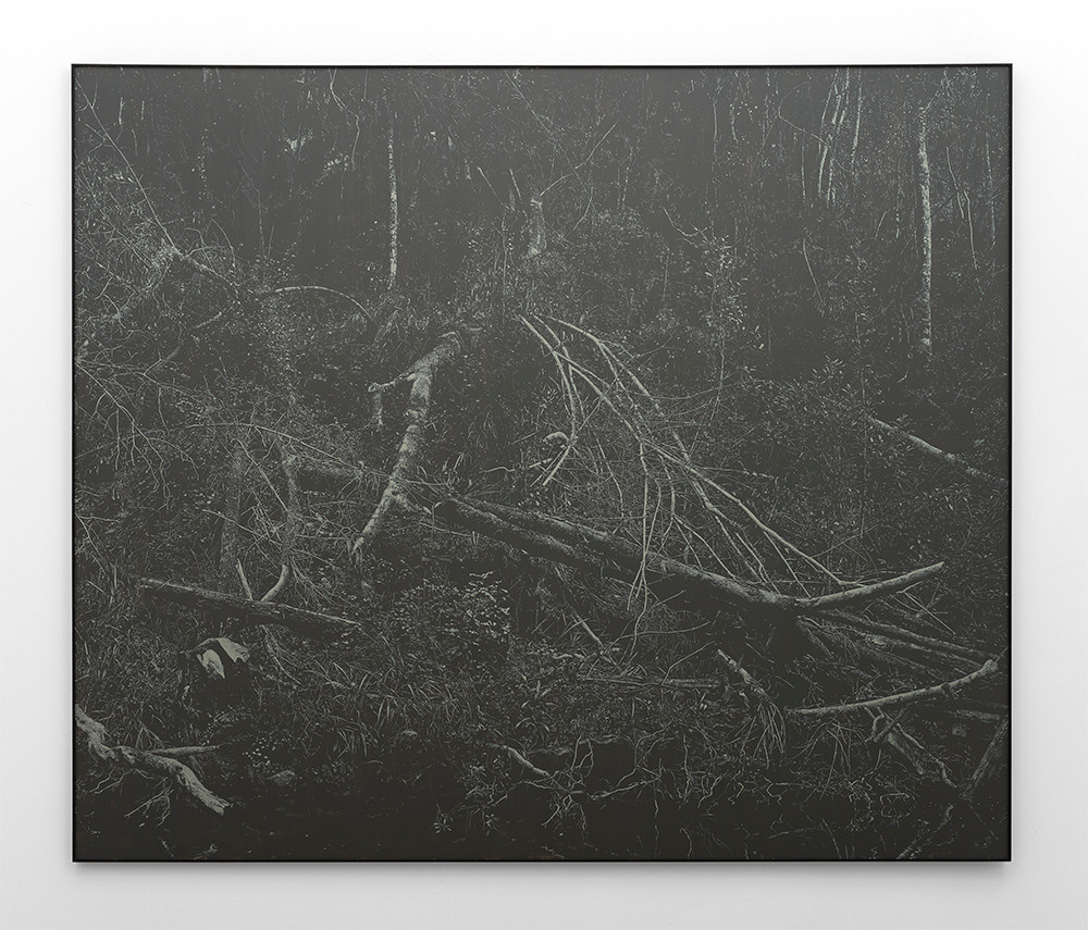 Peter Eastman   Deep Chine - Broken River IV   2016   Oil on Aluminium   170 x 200 cm