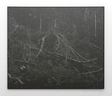 Peter Eastman | Deep Chine - Broken River IV | 2016 | Oil on Aluminium | 170 x 200 cm