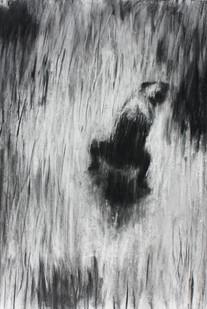 Johann Louw | Kakkende Hond | 2013 | Charcoal on Paper | 100 x 70 cm