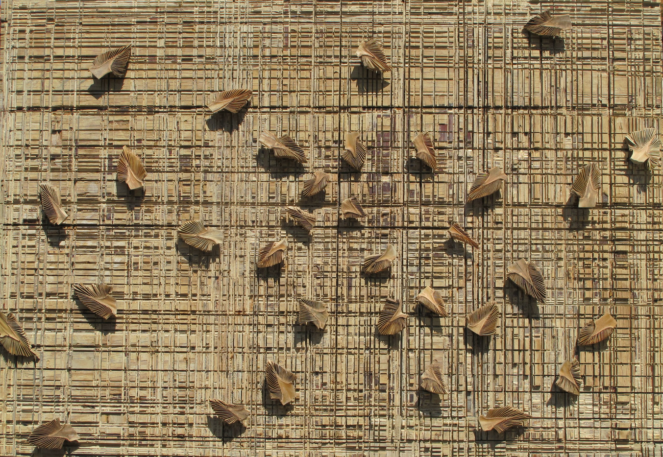Willem Boshoff | Inklings | 2013 | Wooden Cutting Block and Palm (Washingtonia robusta) Cuttings | 122.5 x 165.5 cm