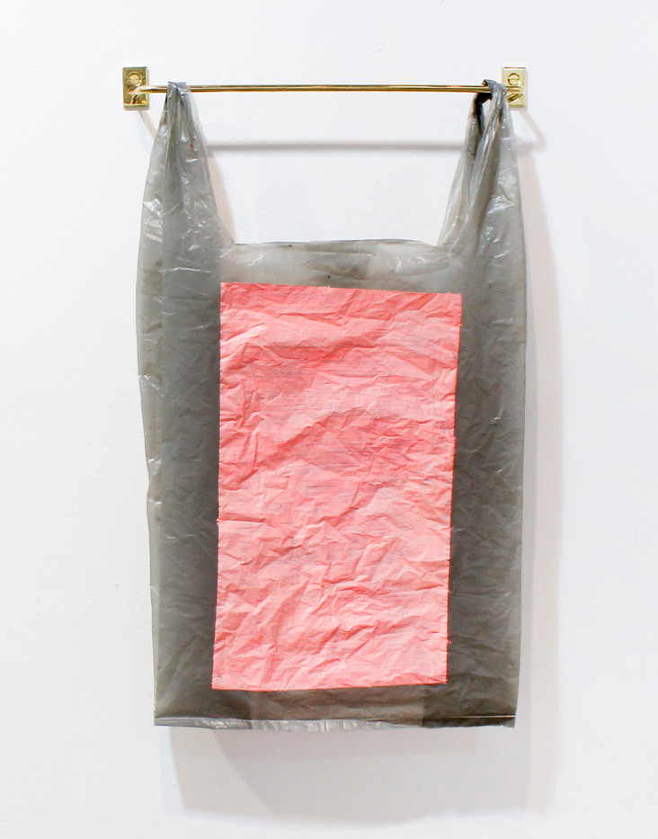Helen A. Pritchard | Untitled - Carrier 33 | 2013 | Polythene Carrier Bag, Oil Paint and Brass Rail | 49 x 28 cm
