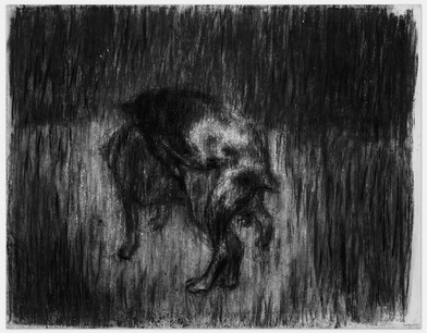 Johann Louw |  Parende Honde | 2014 | Charcoal and White Pastal on Paper | 125 x 159 cm