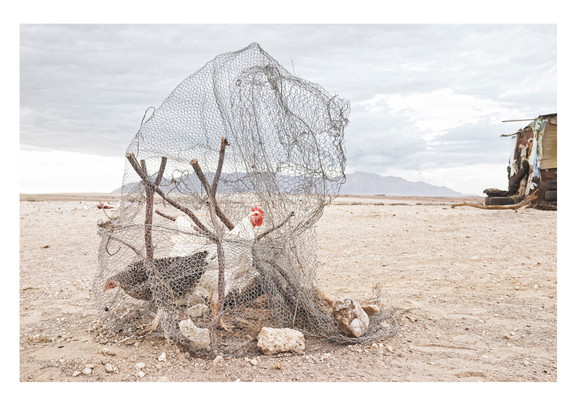 Margaret Courtney-Clarke | The Caged Fowl of Alexandrine Hanabis, aka Kuku, Die Kruising (The Crossing), Uis District, 6 | 2014 | Giclée Print on Hahnemühle Photo Rag Paper | 82 x 112 cm | Edition of 10 + 2 AP