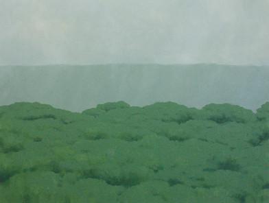 Jake Aikman | N10.79482, W85.674955 | 2013 | Oil on Canvas | 95 x 125 cm