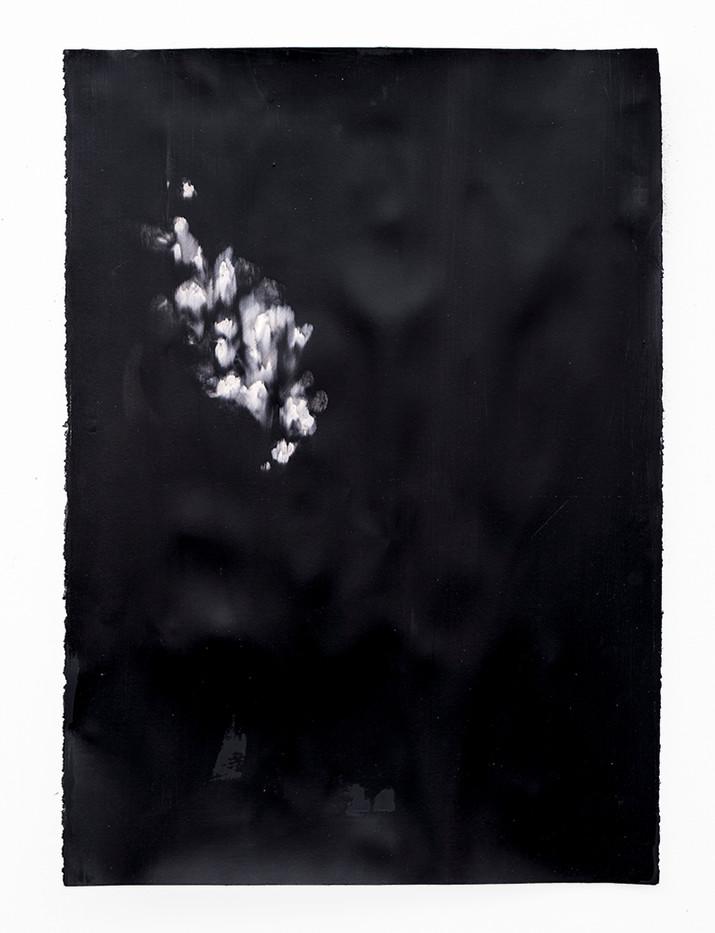 Alexandra Karakashian | Against The Sun IV | 2019 | Oil on Canvas | 100 x 72 cm