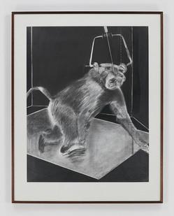 Albert Adams | Ape | 1979 | Pencil, Graphite on Paper | 122 x 92 cm