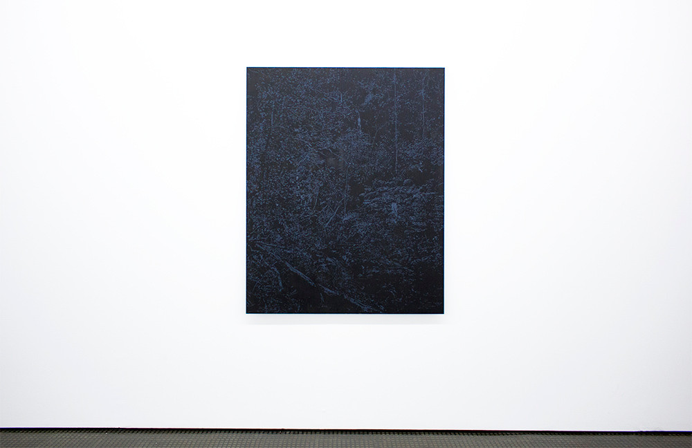 Peter Eastman | Surface Light | 2015 | Installation view