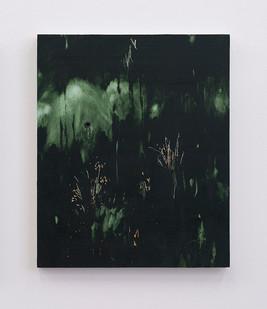 Jake Aikman | Night Blooms III | 2017 | Oil on Board | 48 x 40 cm