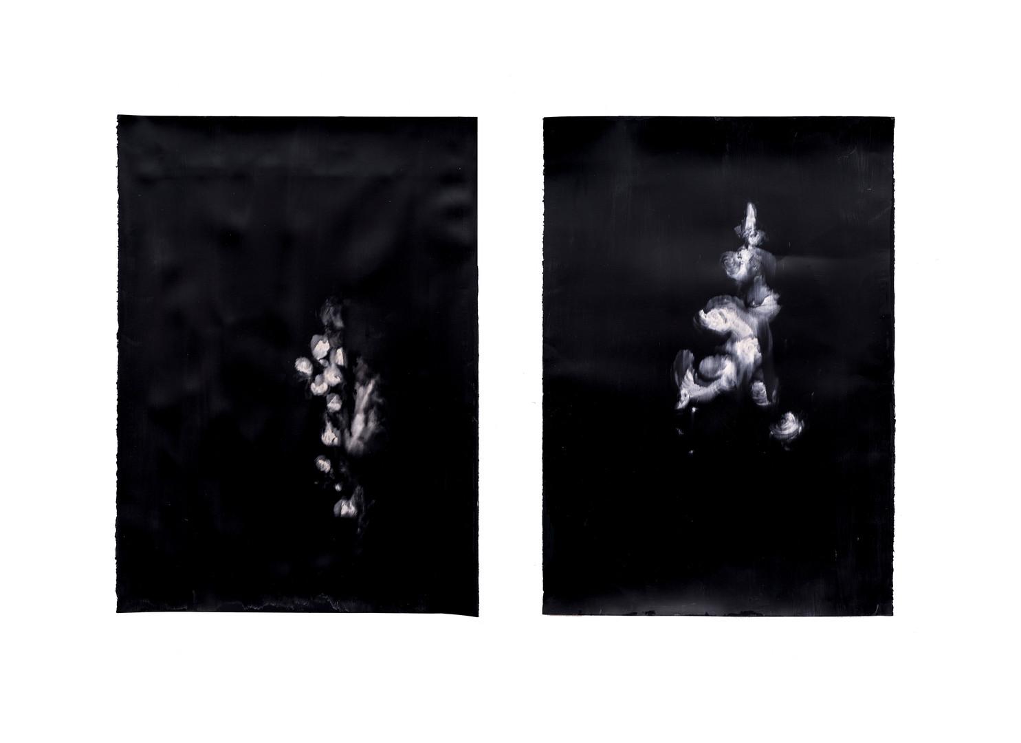Alexandra Karakashian   Against The Sun IX, XXII   2019   Oil on Sized Paper   100 x 70 cm (each)