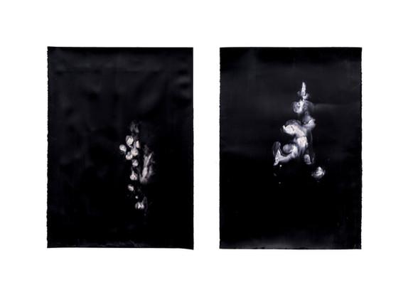 Alexandra Karakashian | Against The Sun IX, XXII | 2019 | Oil on Sized Paper | 100 x 70 cm (each)