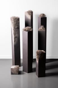 Ernst van der Wal | Untitled | 2019 | Wood, Ash and Imitlin | Installation: Sizes Variable