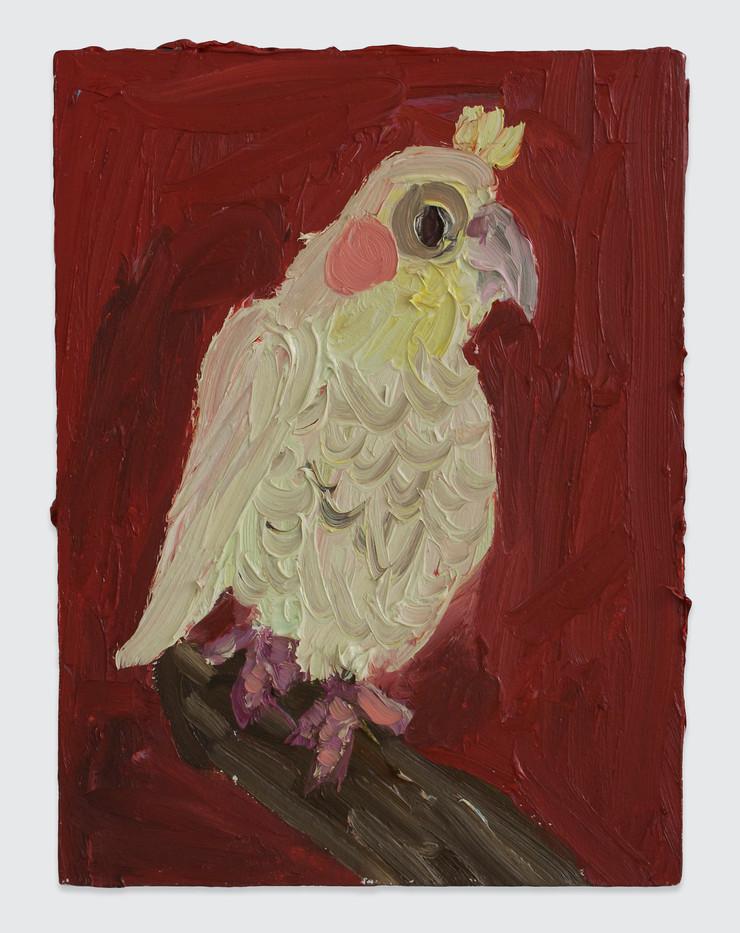 Georgina Gratrix | Bird | 2014 | Oil on Board | 40 x 30 cm
