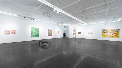 A Show of Solidarity   2020   Installation View