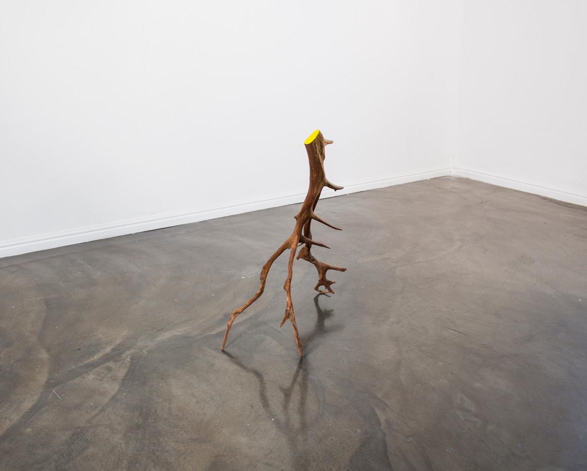 Ruann Coleman | Root | 2014 | Rooiels Root | 70 x 60 x 57 cm