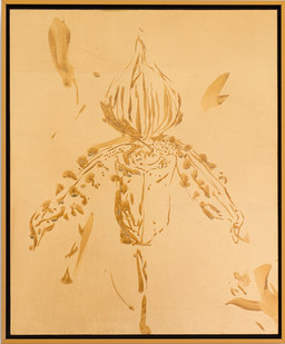 Pierre Vermeulen | Untitled (orchid in study sweat iv) | 2017 | Sweat and Gold Leaf Imitate on Aluminium | 33 x 27 cm