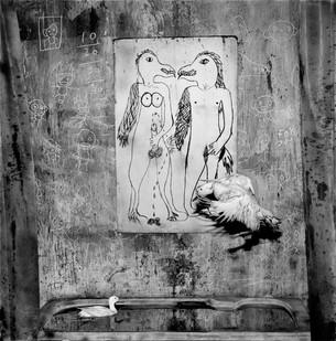 Roger Ballen | Rendezvous | 2012 | Archival Pigment Print | 60 x 60 cm | Edition of 12