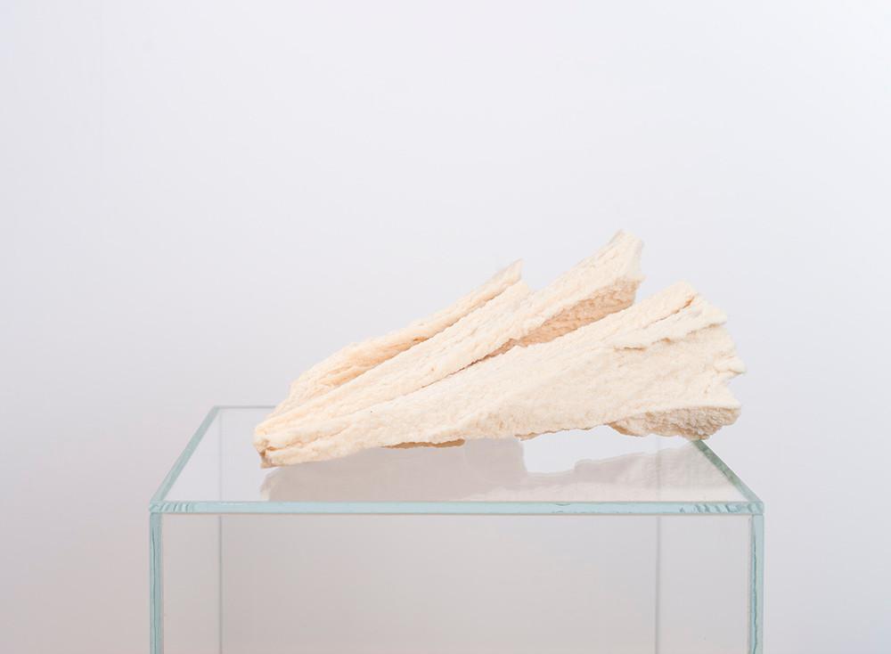 Ruann Coleman   Study V   2017   Polyurethane and Wood   27 x 28 cm