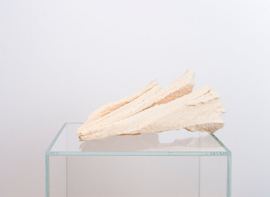 Ruann Coleman | Study V | 2017 | Polyurethane and Wood | 27 x 28 cm