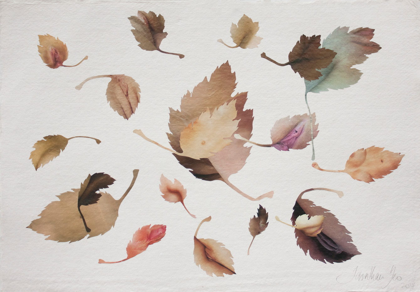 Jonathan Yeo | Untitled | 2014 | Collage on Paper | 31 x 42.5 cm